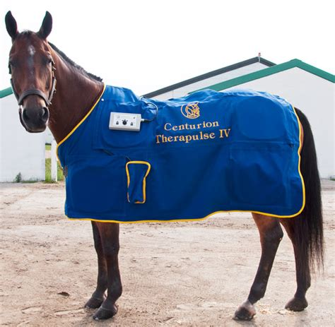 magnetic therapy rugs for horses magnetic rug roselawnlutheran