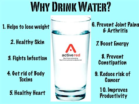 30 day cold water challenge importance of water wrap world