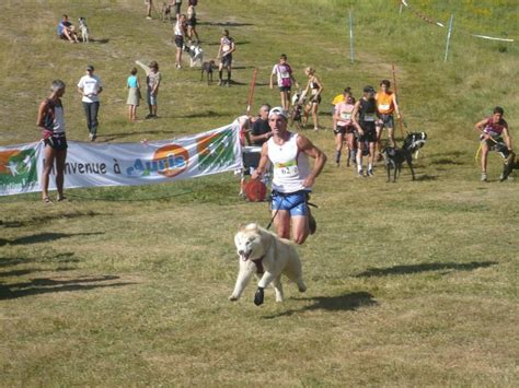 Calendrier Canicross Canicross Course 224 Pied En 233 Quipe Homme Chien Football