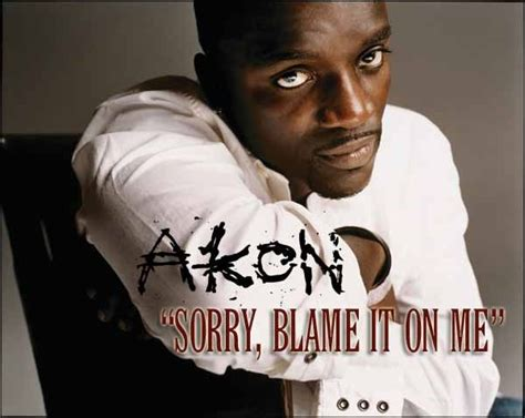 Akon Is Sorry by Subscene Subtitles For Akon Sorry Blame It On Me