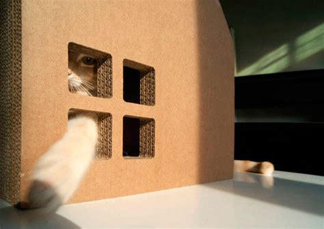 design works home is where the cat is krabhuis casa de cart 243 n para tu gato