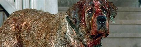 what of was cujo cujo 1983 review static mass emporium