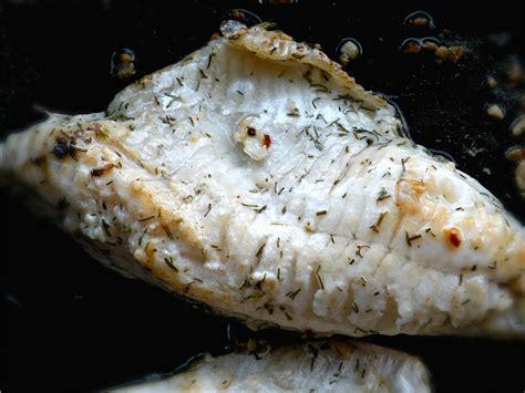 come cucinare i filetti di pesce ricette con filetti di pesce persico