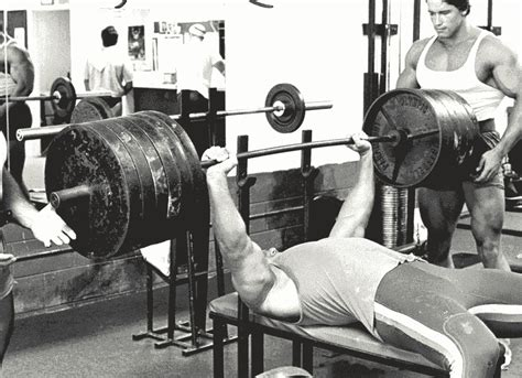 bench press book 3 fundamentals of a powerful bench press
