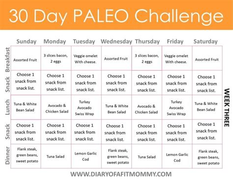 30 day weightloss challenge meal plan diary of a fit 30 day paleo challenge come with