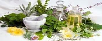 Minyak Esensial Rosemary mengatasi kerontokan rambut dengan minyak esensial lkp wulan