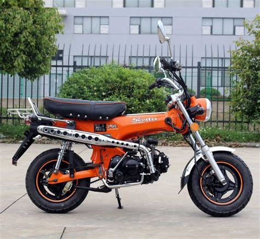 Kleines Motorrad Oder Drosseln by Skyteam Dax 50 St50 6 50ccm Moped F 252 R 2 Personen Skyteam