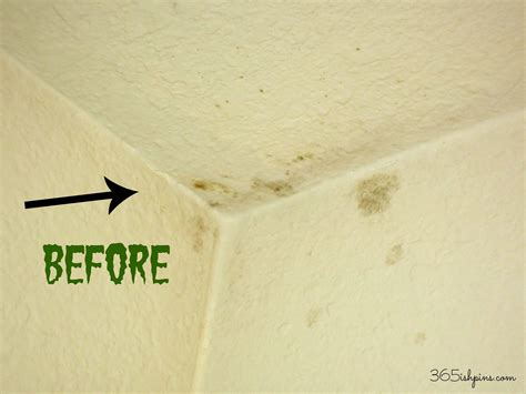 yellow mold on bathroom ceiling day 336 diy mold remover simple and seasonal