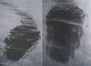 The Amazing Hook Island Sea Monster Photos Revisited the amazing hook island sea monster photos revisited