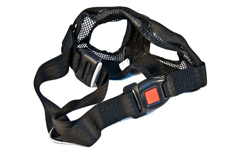 Pet Harness Belt For Car bmw genuine car pet safety seat belt harness small