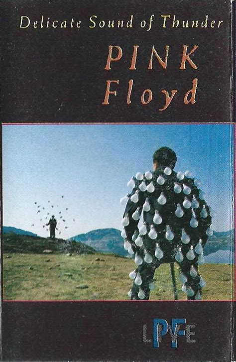Delicate Sound Of Thunder Comfortably Numb by Pink Floyd Delicate Sound Of Thunder Cassette Album