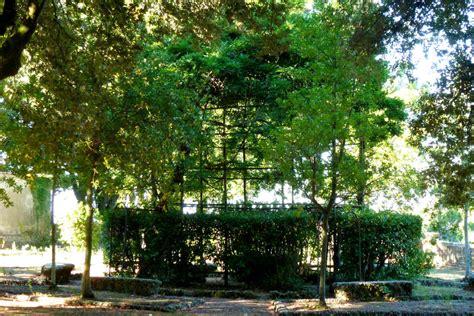 pavillon im park bild quot pavillon im park quot zu pian dei mucini resort in massa