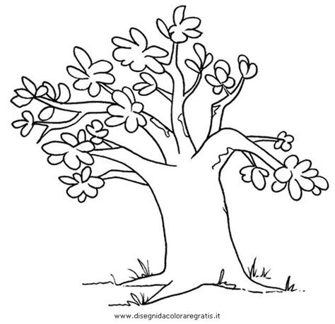 baobab tree coloring page baob ab colouring pages