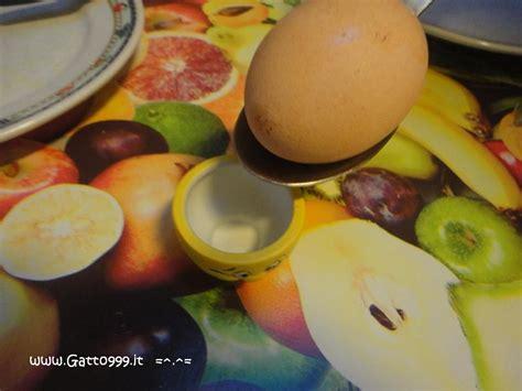 come cucinare un uovo sodo perfetto cat ricetta uovo alla coque quanti minuti