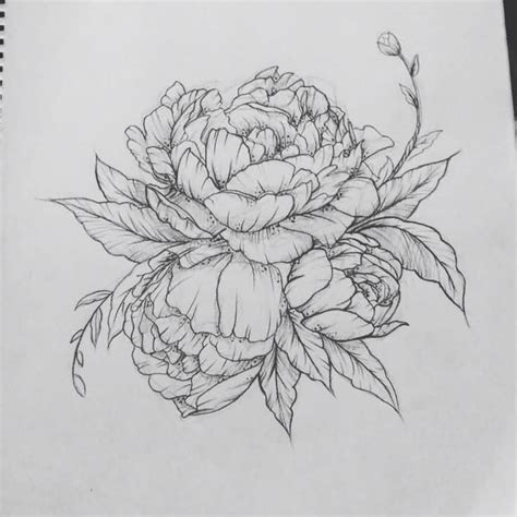 flower tattoo outline beautiful outline cool peony stencil flower