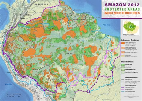 map world jungle charts and graphs about the rainforest