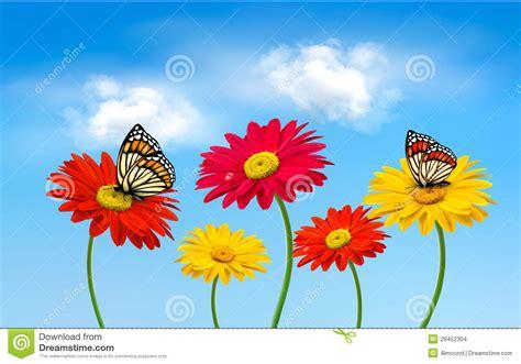 imagenes mariposas naturaleza flores del gerber de la primavera de la naturaleza con las