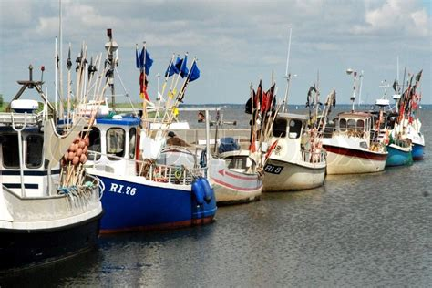 boat license denmark a row of fishing boats wityh flags western denmark