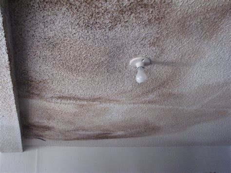 Drywall Popcorn Ceiling by Ceiling Repair Archives Peck Drywall And Painting