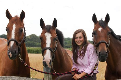 horse passports horse microchipping how much does a