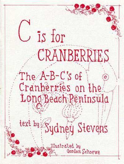 cranberries testo raining in my cranberries