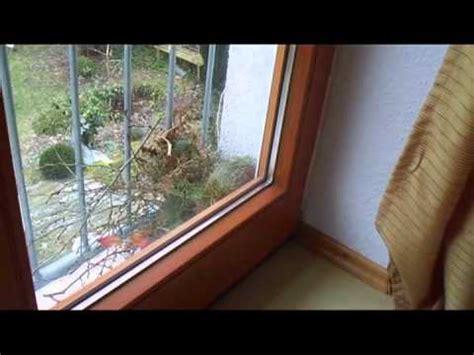 vorm fenster januar 2011 kobelbau bei uns vorm fenster
