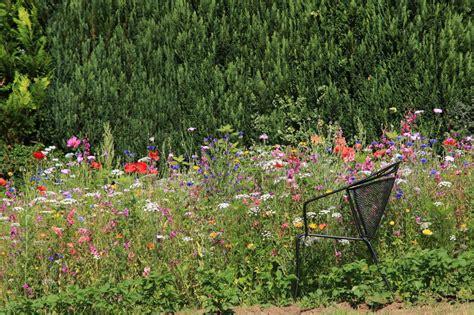 Naturgarten Gestalten by Naturgarten Selbst Anlegen Planung Gestaltung Und Pflanzen
