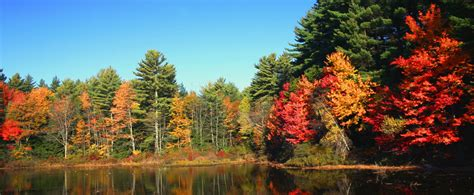 new england s spectacular fall foliage summer 2017 new england s spectacular fall foliage miles morgan travel