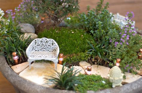 backyard fairy garden backyard mini garden garden loversiq