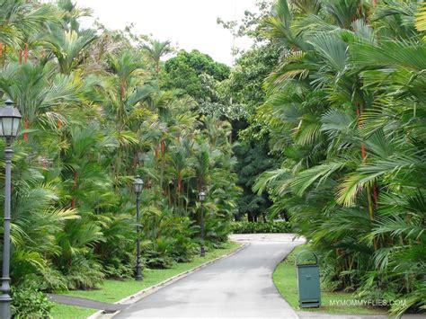 Singapore Botanic Gardens Entrance Fee Garden Ftempo Botanical Garden Entrance Fee