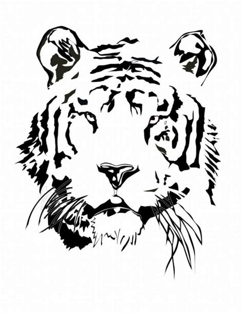 snow tiger coloring page cute tiger coloring pages coloring home