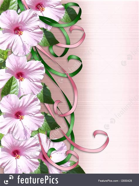 pink hibiscus floral border illustration