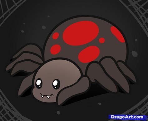 how to draw a for how to draw a spider for step by step animals for for free
