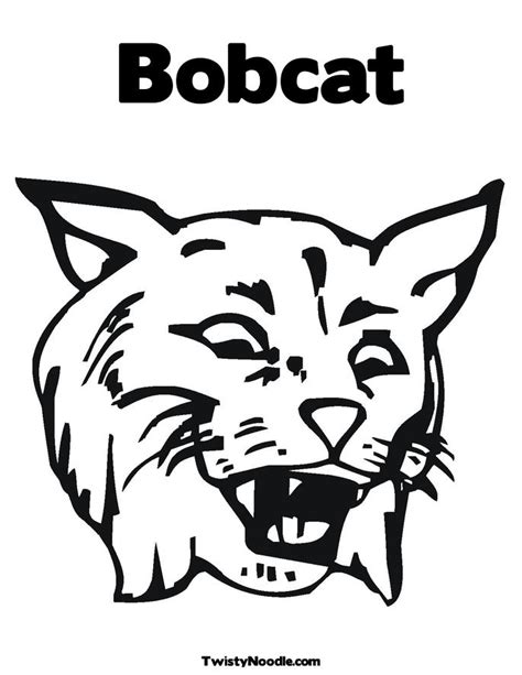 bobcat coloring page bobcat coloring pictures