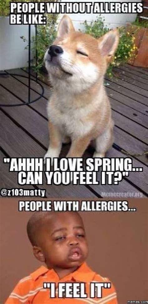 Funny Spring Memes - home memes com