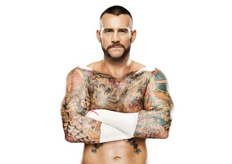 image cm punk pro png wwe 2ks fandom powered by wikia