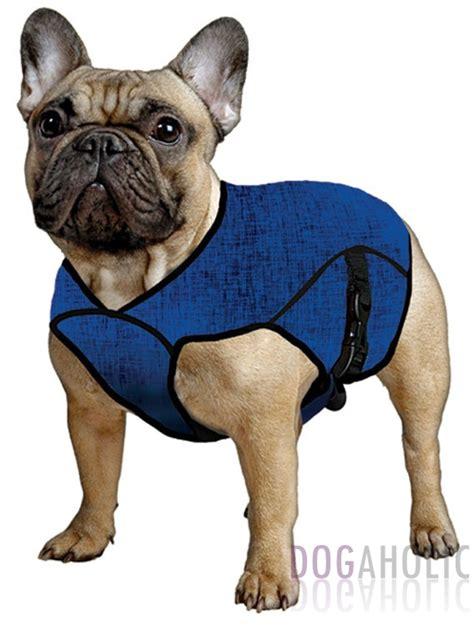 puppy jackets aqua coolkeeper 174 cooling jacket dogaholic
