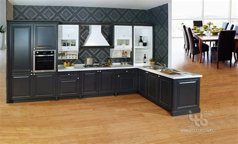 cabinets for kitchen modern black kitchen cabinets black kitchen black kitchen cabinets kitchen cabinetry