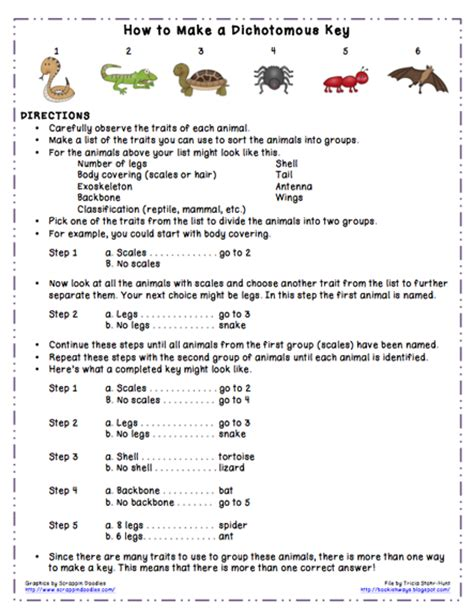 Dichotomous Key Worksheet bookish ways in math and science monday science freebie dichotomous