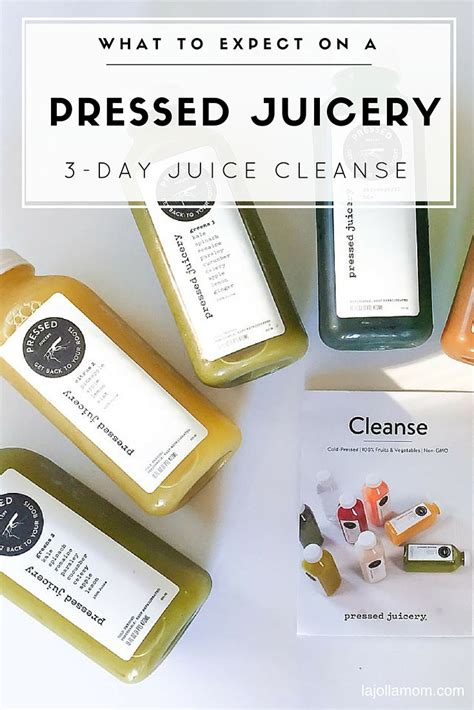 Best Way To Detox After A Cruise by Best 25 9 Day Cleanse Ideas On Isagenix 30