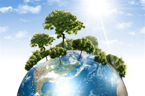 soluciones para la deforestación deforestación.net