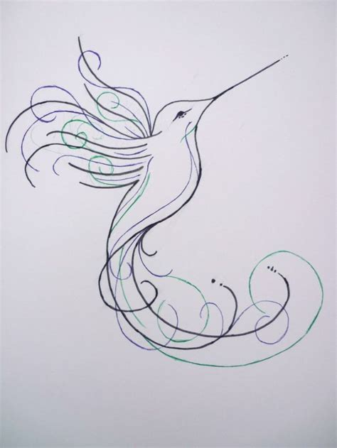 Sketches Meaning by Collection Of 25 Hummingbird Sketch