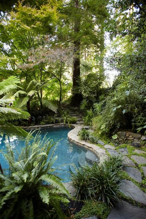 25 best ideas about tropical pool on