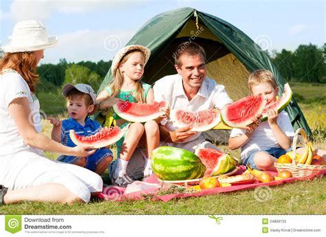 images of family family picnic stock photos image 24899133