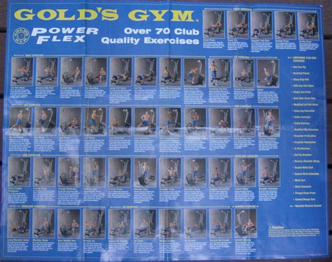 golds home workout chart most popular workout programs