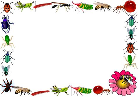 lined paper with science border insects themed lined paper and pageborders problem