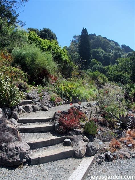 The Berkeley Botanical Garden Berkeley Botanical Gardens