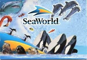 Sea World Sea World Free The Sea