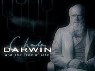 charles darwin biography new documentary 2014 watch evolution documentaries online free
