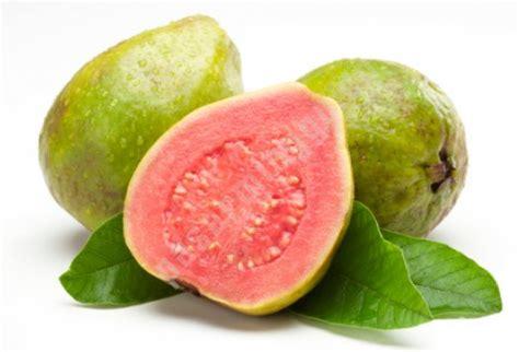 Biji Buah Jambu Bangkok Putih beragam manfaat jambu biji merah bagi kesehatan